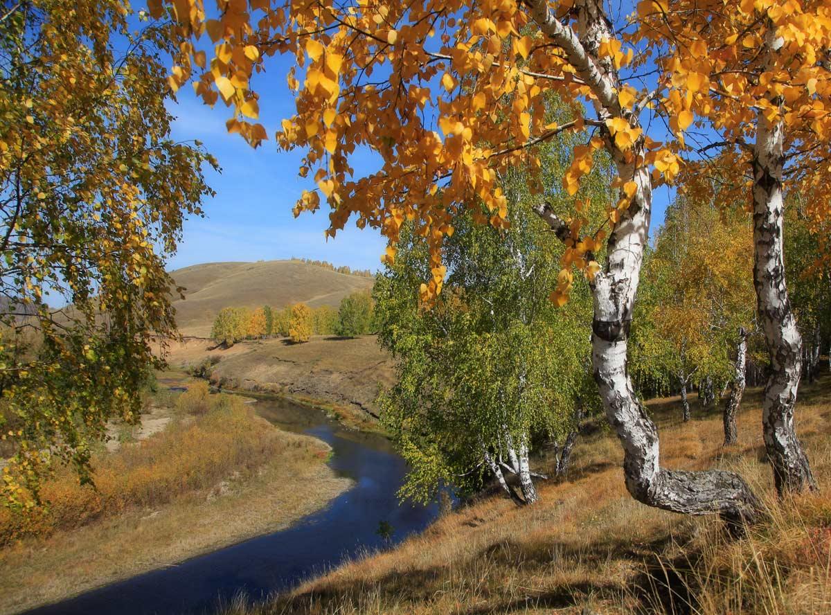 Осень урал фото 5